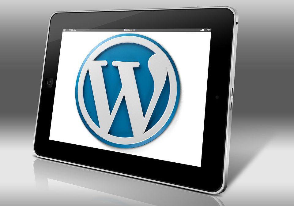 6 Reasons to Use WordPress for Your Business's Website
